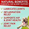 PawfectChew Hemp + Glucosamine Treats for Dogs - Made in USA Hip & Joint Supplement w/Hemp Oil Chondroitin MSM Turmeric - Natural Pain Relief - All Breeds Sizes - 120 Soft Chews #1
