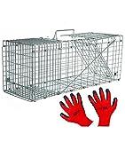 Trampa para Animales Grandes Vivos - 79cm - Efectiva - con Asa - Guantes Incluidos - para Gatos, Zorros, Martas