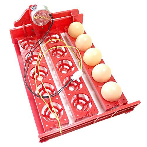 Zonster Bandeja Bandeja De Huevo Huevo Huevos Incubadora AutomáTica 1PC Incubadora Apagará AutomáTicamente Huevos De 3 * 5 Agujeros De Aves De Corral De IncubacióN