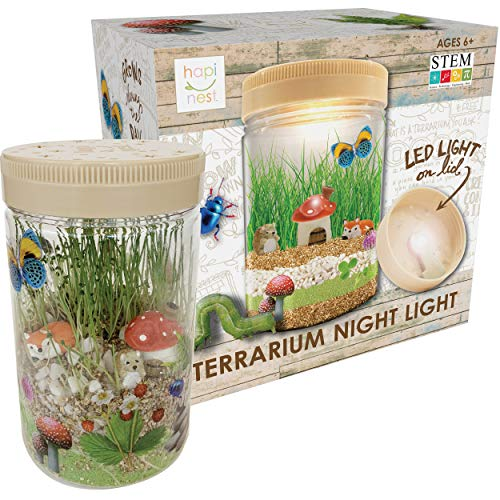 Hapinest Light-up Terrarium Kit for Kids - Arts and Crafts Gifts for Boys and Girls Age 6 7 8 9 10 Year Old