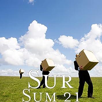 Sum 21