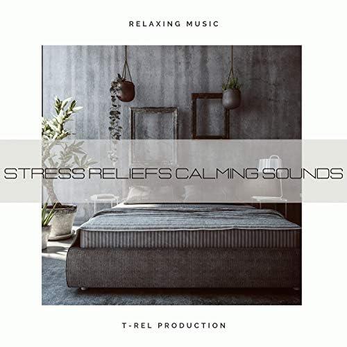 Sleep Noise / Sleepy Noise