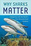 Why Sharks Matter: A Deep Dive with the World's Most Misunderstood Predator