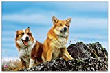 Veloflex 4651068 Schreibtischunterlage Motiv Hunde, rutschfeste, abwischbare Schreibunterlage, 40 x 60 cm