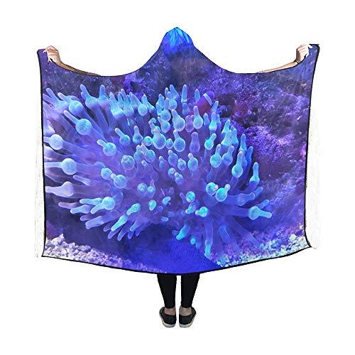VvxXvx Hooded Blanket Beautiful Grape Corals in Aquarium Hood Blanket Comfotable Blanket Hood 60x50inch