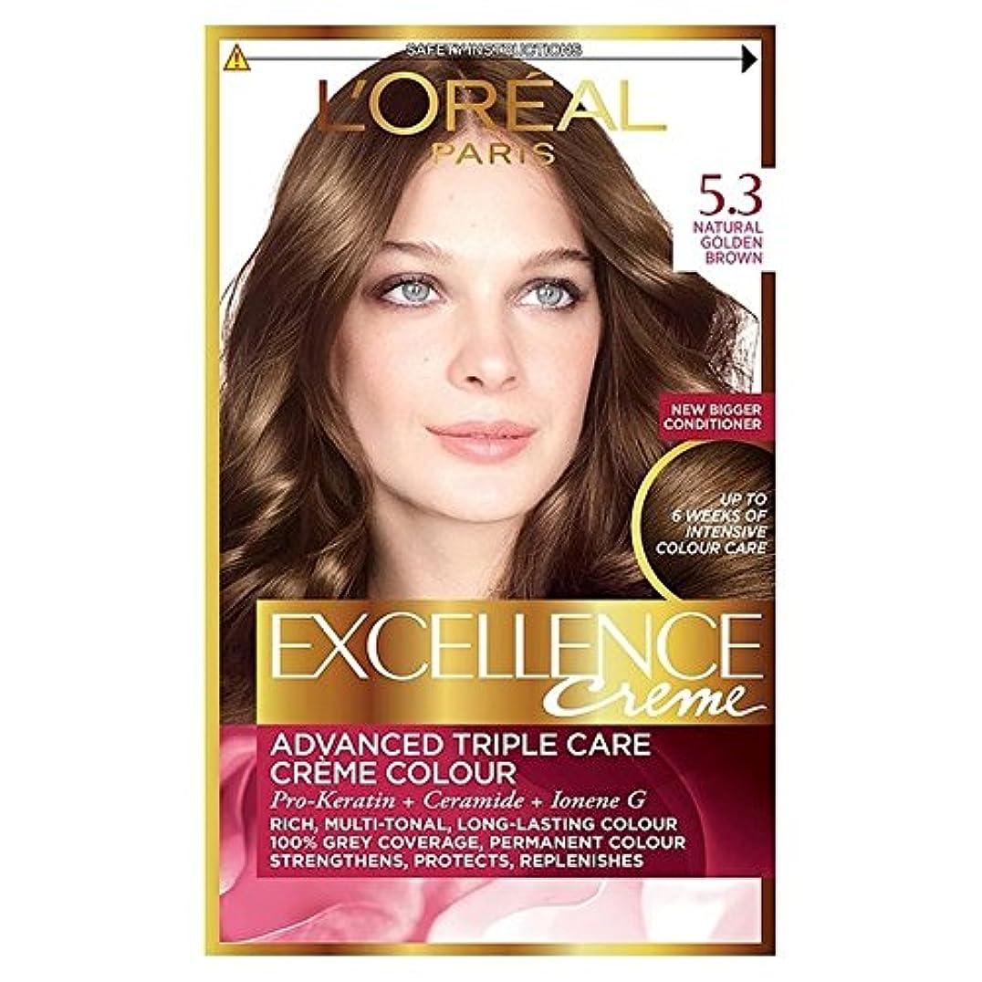 医薬版はさみ5.3ゴールデンブラウンロレアルの卓越性 x4 - L'Oreal Excellence Golden Brown 5.3 (Pack of 4) [並行輸入品]