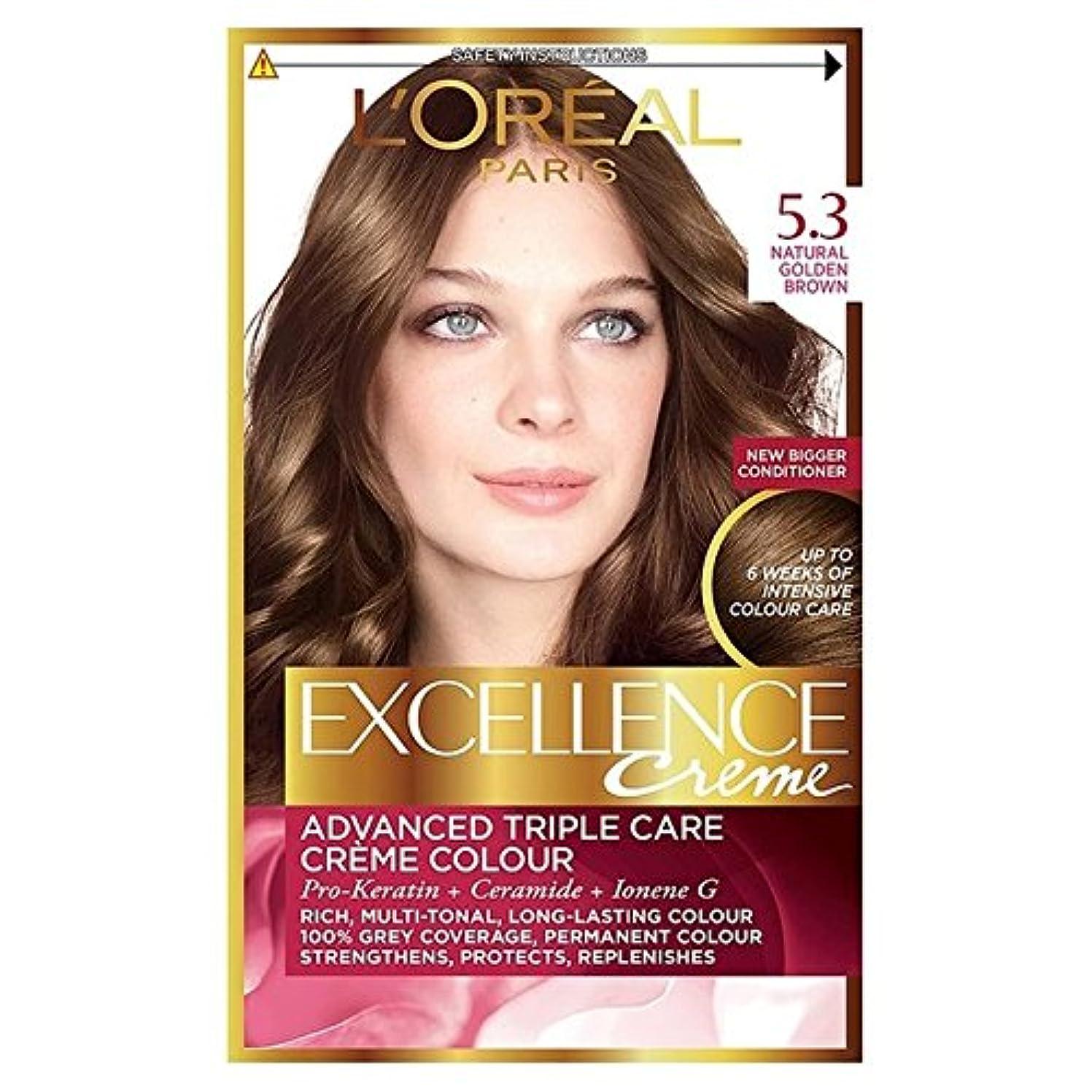 残り物忠誠プレーヤー5.3ゴールデンブラウンロレアルの卓越性 x2 - L'Oreal Excellence Golden Brown 5.3 (Pack of 2) [並行輸入品]