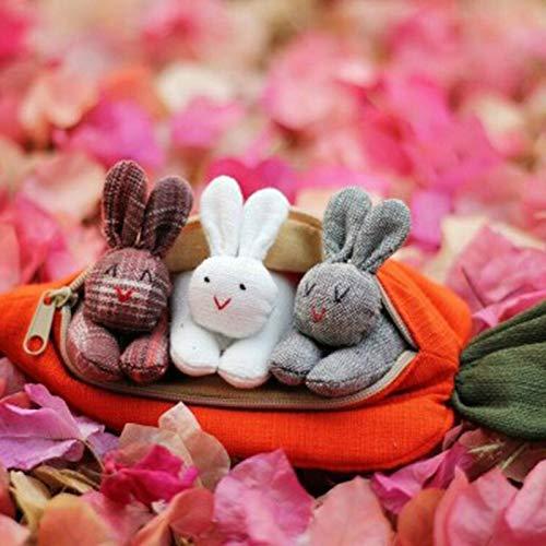 MEIJING 3 Hasen in Karottengeldbörse, Ostergeschenk Süße Karottengeldbörse für Kindergeschenke Home Holidy Desktop-Dekoration mit süßem Kaninchen Praktische...