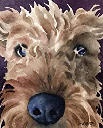 image of an open edition giclee print of Airedale Terrier face close up