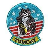 Tomcat Top Gun...image