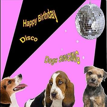 Happy Birthday Disco (Singing Dogs)
