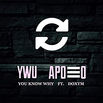 You Know Why (feat. Doxtm)