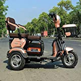 dfff Tricycle for Adults, Electric Tricycle Three-Wheel Scooter for The Elderly And Disabled - 60V 20A/ Fastest Speed 40KM/H/Load 200 Kg