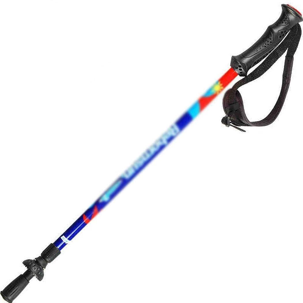 記憶溶融毎年人民の東の道 子供用トレッキングポール屋外用杖 (色 : Dreaming)