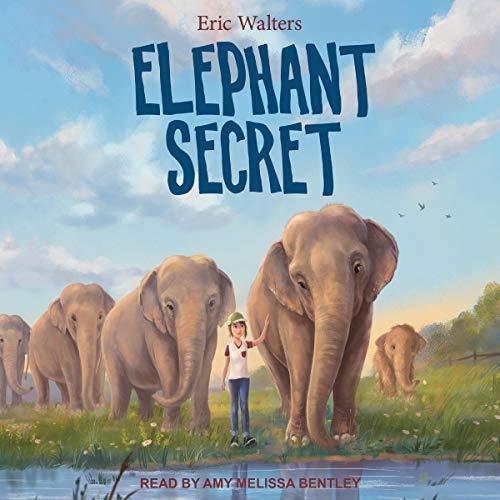Elephant Secret audiobook cover art