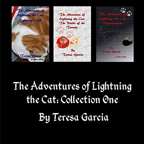 The Adventures of Lightning the Cat cover art