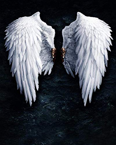 DIY Oil Painting Paint by Numbers Kits for Adult Paint Color According to The Numbers on The Canvas-White Angel Wings 40X50Cm/15.80X 19.70 Inch