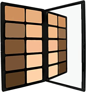 Pro Powder Foundation Palette by Sacha Cosmetics, Best Professional Natural Matte 2-in-1 Powder Foundation Kit to give Full Coverage & a Flawless Finish