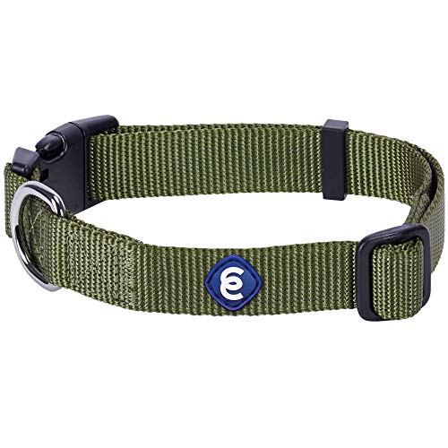 Blueberry Pet Essentials Classic Durable Solid Nylon Adjustable Dog Collar, Military Green, Small, Neck 12'-16', for Boy and Girl Dogs