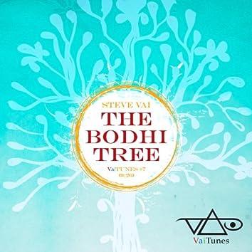 The Bodhi Tree (VaiTunes #7) - Single