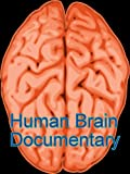 Human Brain Documentary