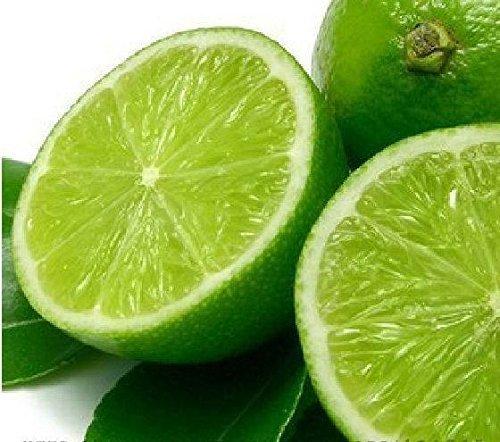 Promotion! 5 packs, 10 graines / paquet, graines de citron intérieur, extérieur, graines comestibles BONSAï graines vert citron, les aliments biologiques, cadeau de thé