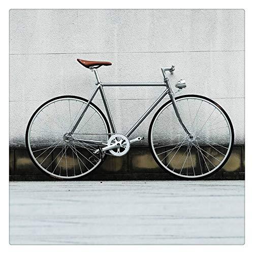 Retro Steel Cycling Mountain Bike Frame Sliver 700C Fixed Gear Bike Track Single Speed Bike 52cm Bike Vintage Frame (Sliver,52cm(175cm-180cm))