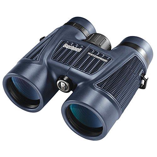 Bushnell H2O Waterproof/Fogproof Roof Prism Binocular, 8 x 42-mm, Black
