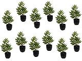 Sprokert Macetas de Arce Verde 12 und, Plantas Artificiales Decorativas, Planta de 28 cm en Maceta de plástico, Ideal para la decoración hogar (Verde)