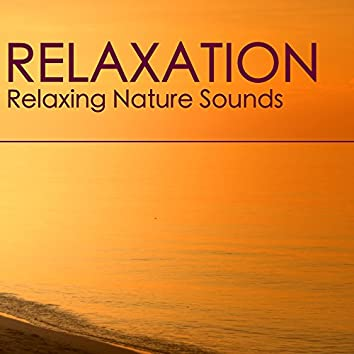Relaxation - Relaxing Nature Sounds Relaxation and Tibetan Chakra Meditation Music for Insomnia Problem, Stress Relief, Rest, Mindfulness Meditation, Deep Sleep, Studying, Healing Massage, Spa, Sound Therapy, Chakra Balancing, Baby Sleep