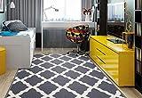 Ottomanson Glamour Collection Non-slip Trellis Design Area Rug, 3'3' X 5', Gray