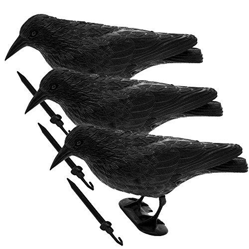 CB Home & Style Taubenschreck 3er Pack Krähe Rabe Taubenabwehr Vogelschreck Lockvogel