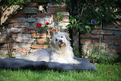 ZOLLNER Hundebett Hundekissen 70×100 cm, Farbe anthrazit, Antirutschnoppen - 6