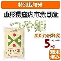 ≪特別栽培米≫山形県庄内市余目産めだかのお米「つや姫」生産者「米シスト庄内8人衆」5kg