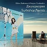 Dzhundzhuriya Surbahar Remix