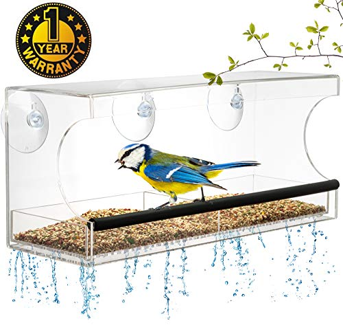 Window BIRD FEEDER, Extra Strong Suction Cups, Removable Seed Tray with Drainage Holes to keep seeds dry, +3 Extra suction cups, Acrylic Clear Design to Enjoy Bird Watching in the Comfort of your Home