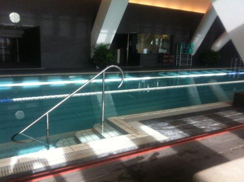 Watashi no Rock Star Lesbian no tame no Tokyo hotel pool annai (Japanese Edition)