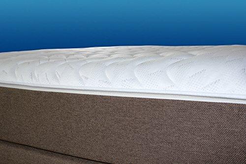 Charlottes Möbelkaufhaus Boxspringbett ROM II 140x200 Braun. Manufaktur Design. Härtegrad H2 / H3. Handarbeit Made in Germany. (140x200 cm, Braun Stoff)