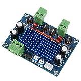 Weikeya Sofisticado amplificador digital de alta potencia, tablero del amplificador Hifi TPA3116 4-8Q 8-28V plástico hecho