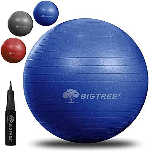 BIGTREE Anti-Burst Palla da Ginnastica Fitness Yoga Core, Blu, 55 cm
