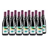 Saumur-Champigny Ruben Rouge 2015 - Bio - Domaine Bobinet - Vin AOC Rouge du Val de Loire - Cépage Cabernet Franc - Lot de 12x75cl
