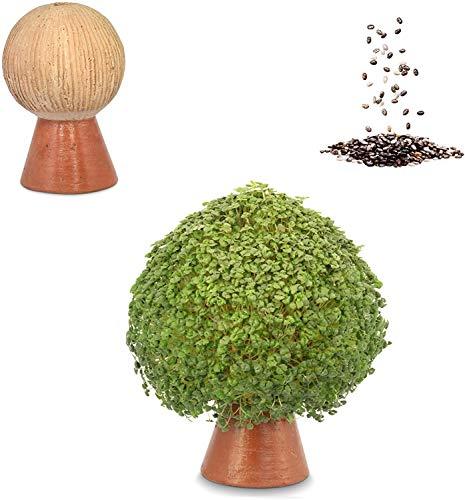 Growing Fiesta Anzuchtset Pilz für Chia-Samen, Kresse, Keimsprossen (handgemachte Tonfigur, getöpfert, gebrannt) 14530