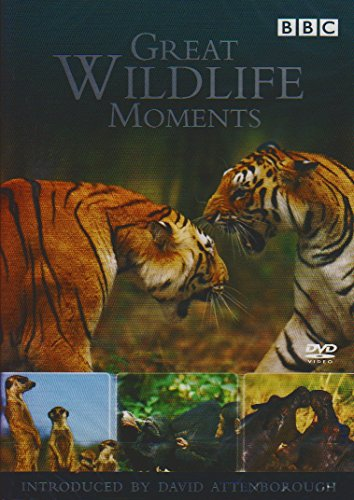 Great Wildlife Moments Introduce...