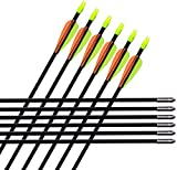 ALBERTU 31 inch Archery Hunting Arrows Feather Target Carbon Arrows for Traditional Recurve or Long Bows Arrows Practice