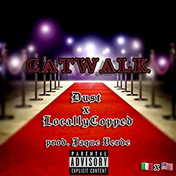 CATWALK (feat. LocallyCopped)