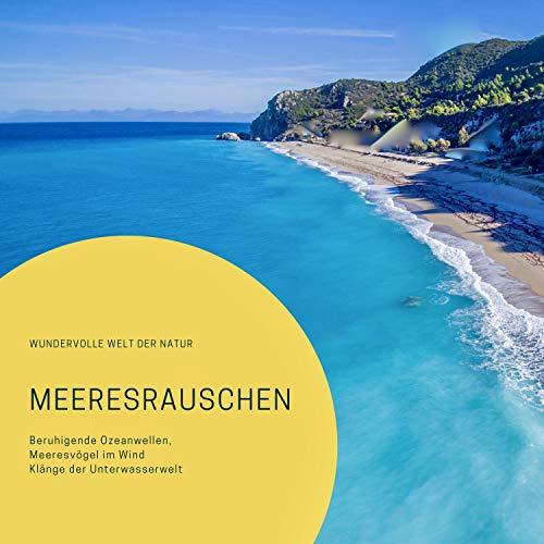 Meeresrauschen - Beruhigende Ozeanwellen, Meeresvögel im Wind, Klänge der Unterwasserwelt Titelbild