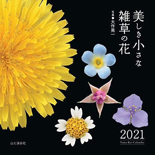 カレンダー2021 美しき小さな雑草の花 (月めくり・壁掛け) (ヤマケイカレンダー2021)の詳細を見る