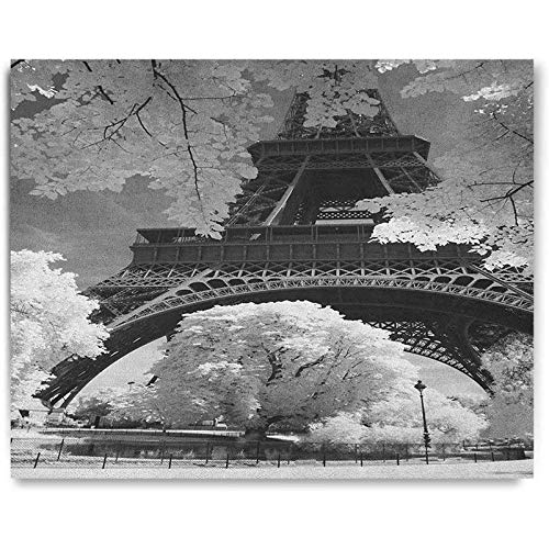 Black and White Wallpaper sticker Eiffel Tower with Blossoming Trees Historical Paris Famous Landmark France Personalized wall decals 20x16
