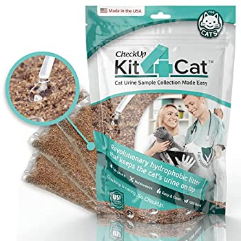Best kit for cats Reviews