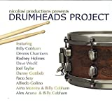 Drumheads Project...